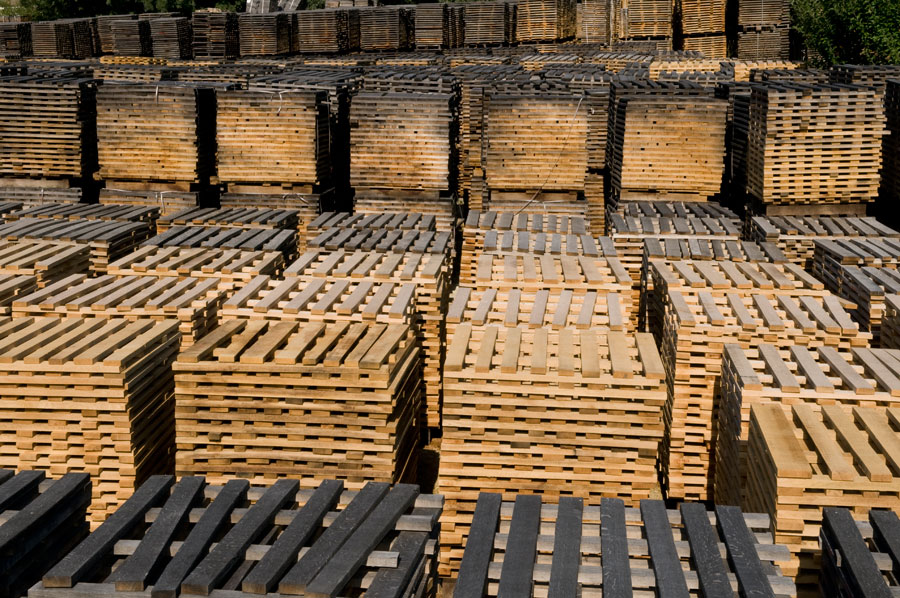 Traditional Cooperage Stave Inspection And Outdoor Seasoning